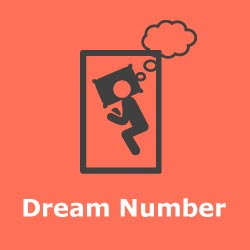 Teer Dream Numbers